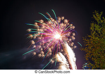 Colorful fireworks and fireworks in the sky