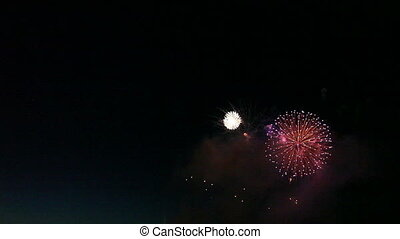Colorful Fireworks Celebration During the 4th of July
