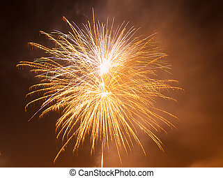 Colorful fireworks in the night sky. Happy new year ...