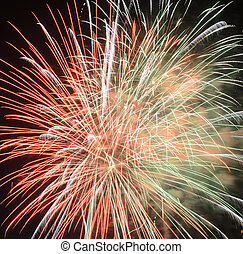 Colorful fireworks in the night sky