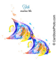 Colorful fish watercolor Vector isolated on white backgrounds