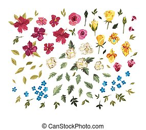 Colorful floral collection with leaves and flowers.