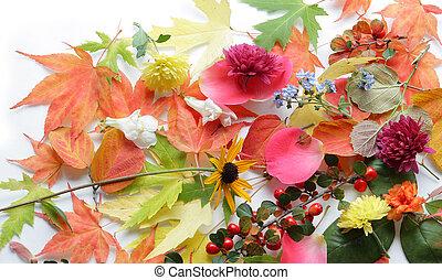 botanical background
