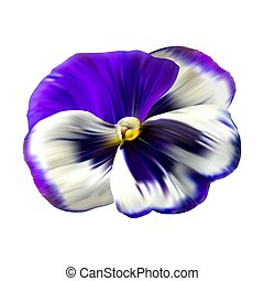 Colorful flower background with pansies flowers. Winter ...