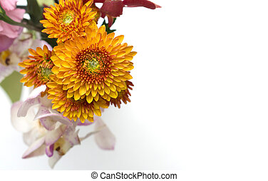 Colorful flower bouquet arrangement isolated