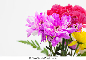 Colorful flower bouquet arrangement  on white background