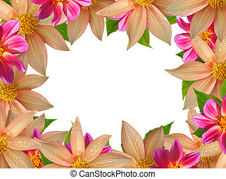 colorful flower frame isolated on white background