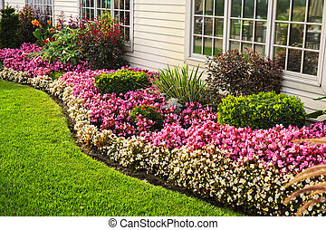 Colorful flower garden - Flowerbed of colorful flowers...