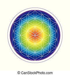 colorful flower of life geometry in rainbow colors