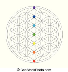 colorful flower of life geometry