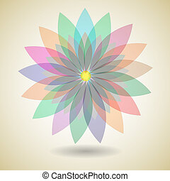 Colorful flower with shadow background