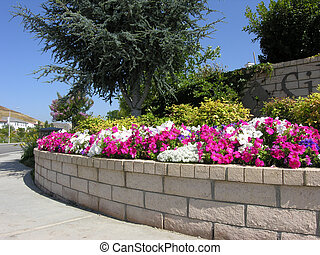 colorful flowerbed at entrance to housing development in Southern California