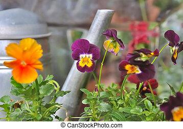 colorful flowers  against metal