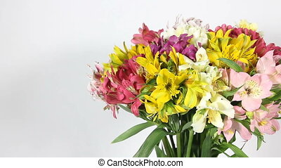 colorful flowers bouquet of alstroemeria on white background...