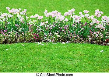 Colorful flowers garden bed in springtime