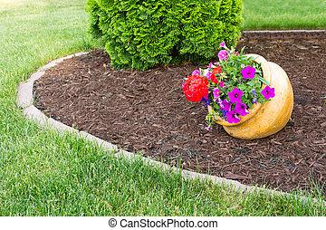 Colorful flowers in a flowerpot in a garden