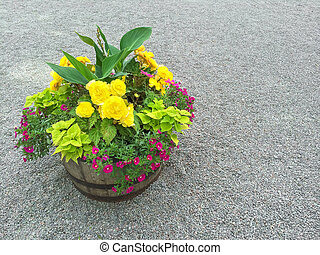 Colorful flowers in a wooden barrel