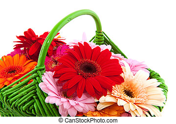 Colorful flowers in basket