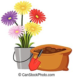 Colorful flowers in bucket on white background