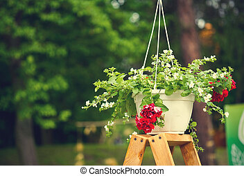 Colorful flowers in hanging pots, on a wooden stand