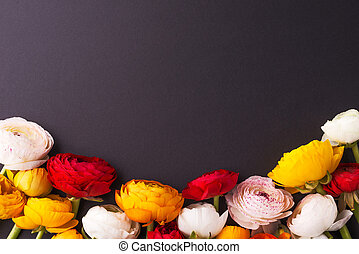 Colorful flowers on a dark background.