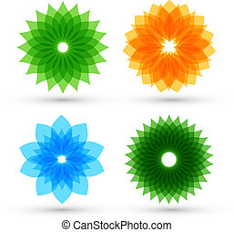 Colorful flowers set vector illustration