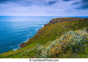 Colorful flowery fields on the slopes with rocky coastline, France