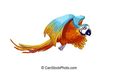 Colorful flying parrot, cartoon animal on white