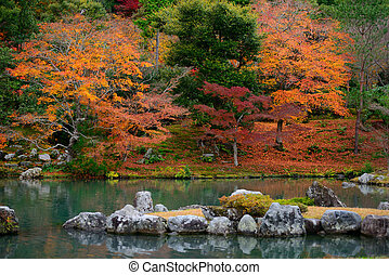 Colorful foliage in the autumn and japan style pond.
