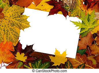 Colorful frame of fallen autumn leaves with text message