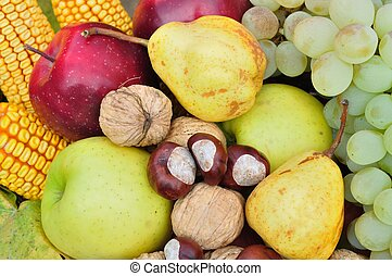 Colorful fresh autumn fruits