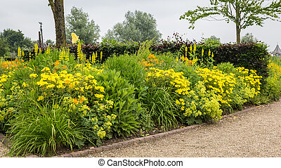 Colorful garden with yellow flowers