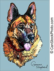 Colorful German shepherd vector hand drawing Illustration