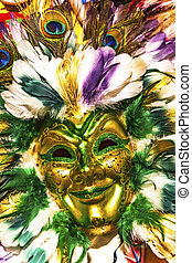 Colorful Green Gold Mask Feathers Mardi Gras New Orleans Louisiana