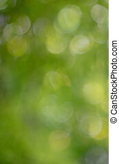 Colorful green natural blurred background with bokeh effect.