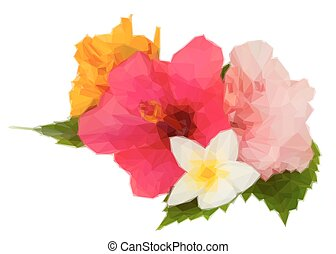 colorful hibiscus flowers