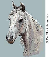 Colorful Horse portrait-3
