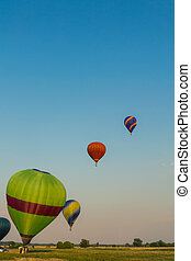 Colorful hot air balloons early in the morning