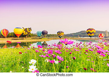 Colorful hot-air balloons flying over cosmos flowers at sunset
