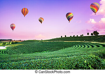 Colorful hot air balloons flying over tea plantation landscape at sunset