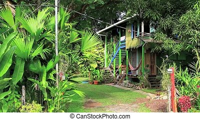 Colorful house in the jungle