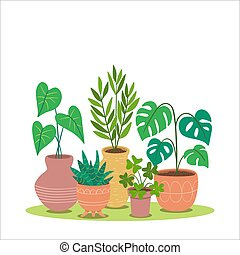 Decorative houseplants growing in pot. Vector illustration isolated on white background. Design elements easy to edit and rearrange. Square format.