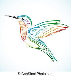 Colorful hummingbird - Colorful humming bird illustration