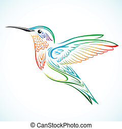 Colorful hummingbird - Colorful humming bird illustration