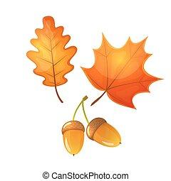 Colorful illustration of an oak leaf and acorn