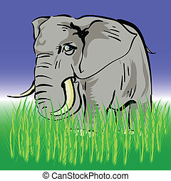 elephant - colorful illustration with elephant for your ...