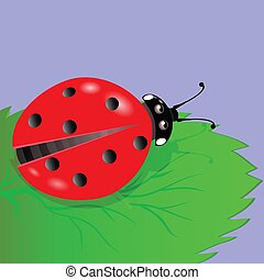 ladybird - colorful illustration with ladybird for your...