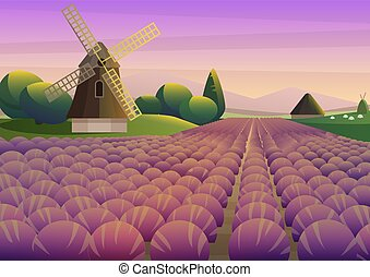 Colorful illustration with purple lavender field with old windmill on background of sunset sky.