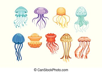 Colorful jellyfish set, swimming marine creatures watercolor vector Illustrations