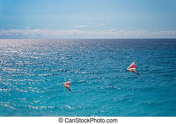 Colorful kites on the blue sea